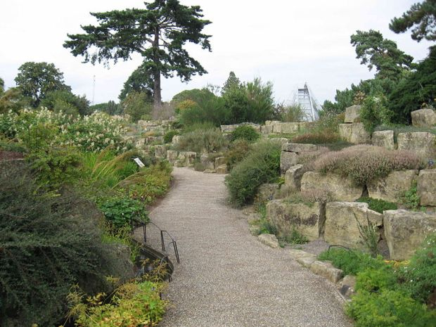 Королевский ботанический сад в Кью
