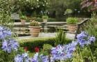 Сад Борд-хилл