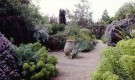 Сад Дэнменс