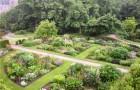 Сад Пенджеррик