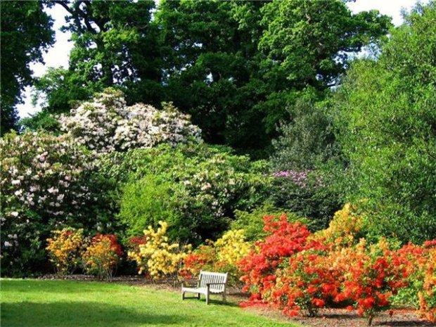Сад Шеффилд-парка