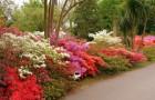 Сады Эксбери