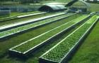 Сады Гринкомб