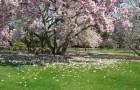 Сады Херши