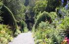 Сады Илнакуллин