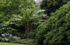 Сады Трелиссик