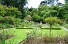 Сады Тревитен
