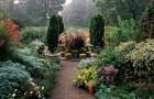 Сады Вейв Хилл