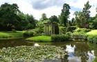 Сады замка Чолмондли