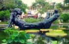 Тропический ботанический сад Фэйрчайлда