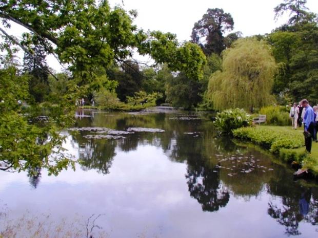 Водный сад Лонгсток