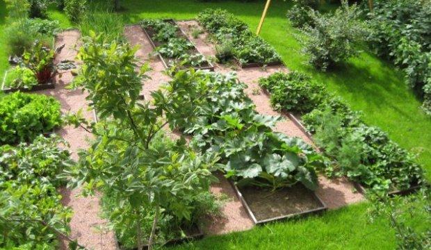 Вспашка огорода