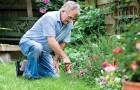 23 февраля 2015 года: подарок садоводу-мужчине