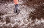 7 апреля 2015 года: раскисляем почву