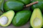 6 лучших продуктов для детоксикации