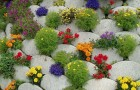 Взгляд на изменение климата с точки зрения садовода