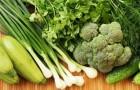 Какие овощи помогут очистить и защитить печень