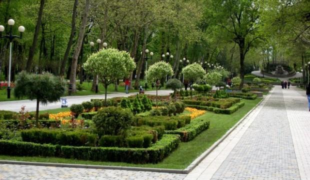 Зеленые зоны не обеспечивают биоразнообразия в городских районах