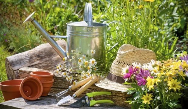 Вегетарианство + садоводство = солидная экономия