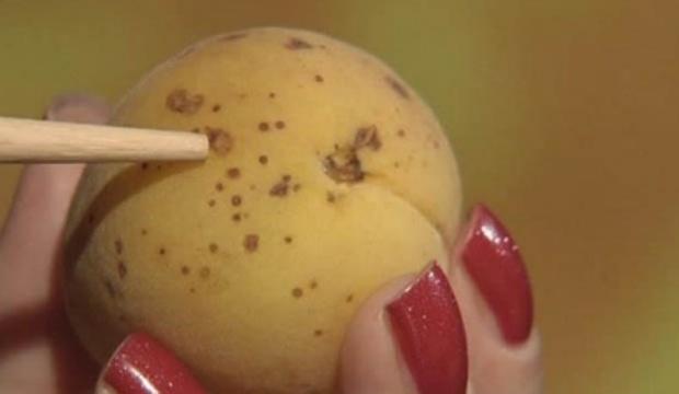 Что означают точки на абрикосе?