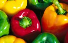 Перец овощной