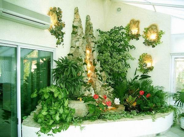 Что делать, если растениям не хватает света?