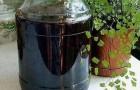 Сироп из черной смородины натуральный