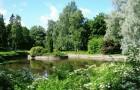 Естественный пруд и его экологическое равновесие