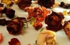 Примочки из настоев сухих цветков