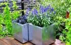 Растения для посадки в контейнеры
