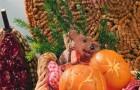 Резные апельсины