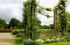 Садовые экраны, ширмы, решетки