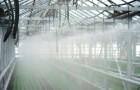Системы «искусственного тумана» в теплицах