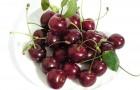 Сорт вишни обыкновенной: Октава