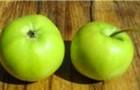 Сорт яблони: Башкирский изумруд