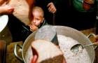 Урожайность во всем мире идёт на спад