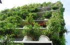 13 причин выращивать овощи в вертикальном огородее
