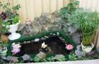 Комнатный пруд
