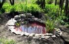 Мини-пруд