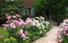 «Цветник около входа в дом»