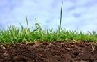 Как определить состав почвы