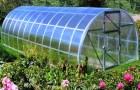 Нужна ли огороду теплица?