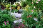 Сад в июле