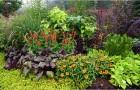 Цветники в плодовом саду