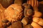 Дрожжи хлебные
