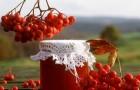 Настойка яблочно-рябиновая