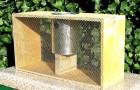 Пересылка пчел в пакетах