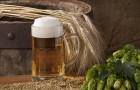 Пиво хмельное