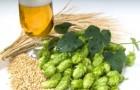 Пиво ячменное