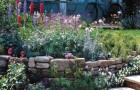Проект сада «Сад открытий»